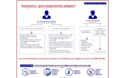 COVID-19 : un centre d'accueil dédié à la prise en charge des patients infectés ouvre à Fenouillet